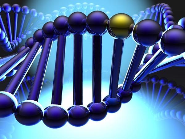 Выявлен ген, способный стирать воспоминания