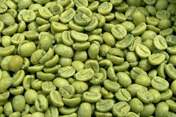 зеленый кофе с имбирем купить
