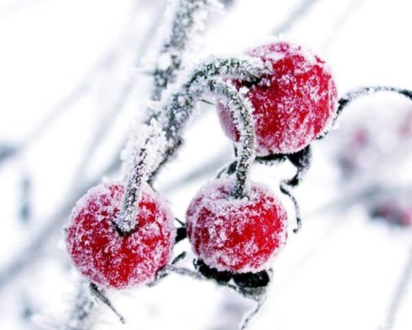 Евстратиев день, Ведьмины посиделки – 26 декабря