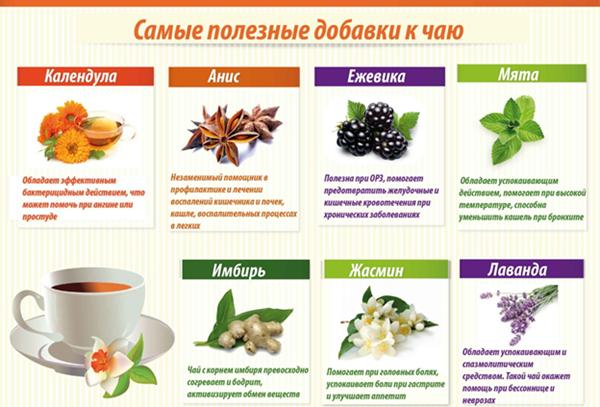8 самых полезных продуктов в чай