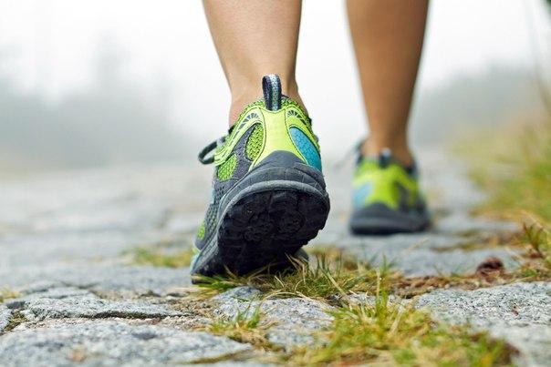 Быстрая ходьба помогает похудеть лучше, чем спортзал