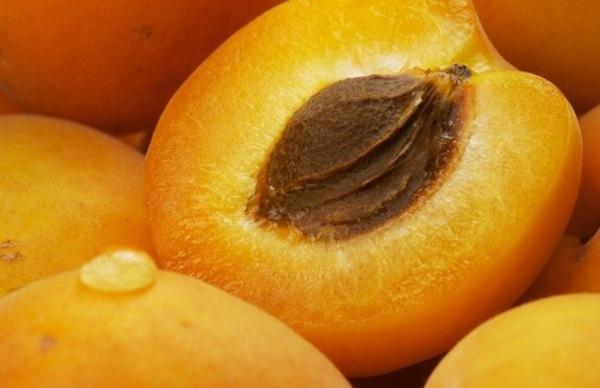 Абрикос – самый «сердечный» фрукт