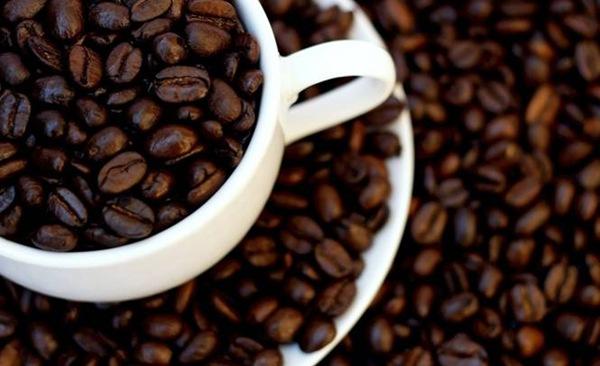 В будущем кофеманам придется отказаться от любимого напитка