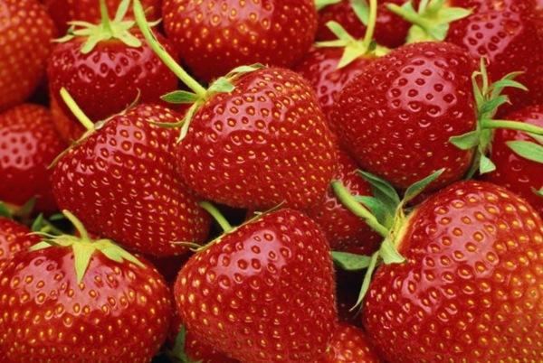 Красные, оранжевые и желтые фрукты не допустят рак груди