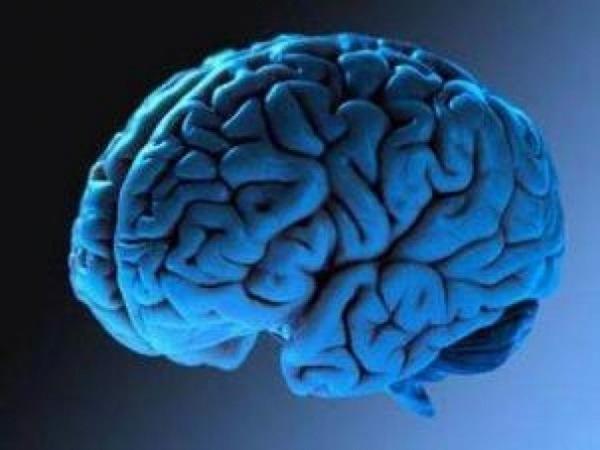 В мозге нашли соединение, которое провоцирует суицид