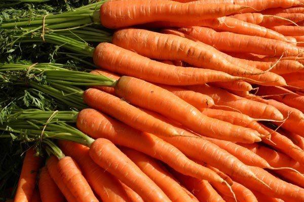 Оранжевые овощи и фрукты помогут предотвратить диабет